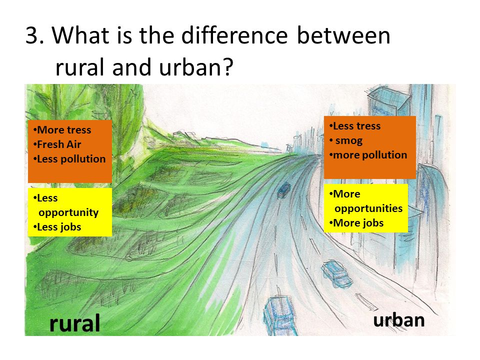 3. What is the difference between rural and urban
