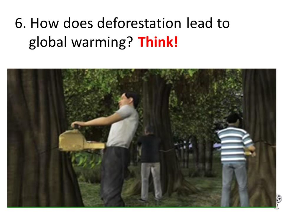 6. How does deforestation lead to
