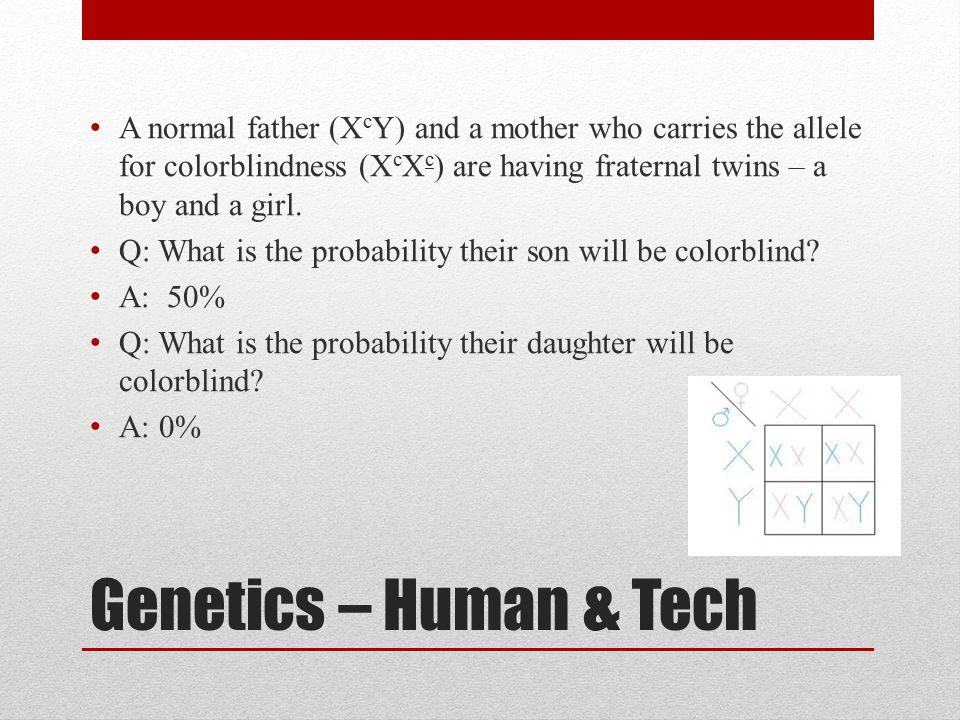 A normal father (XcY) and a mother who carries the allele for colorblindness (XcXc) are having fraternal twins – a boy and a girl.