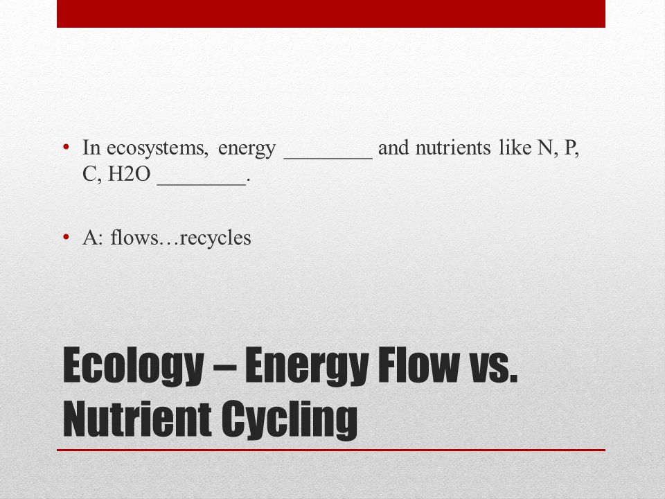 Ecology – Energy Flow vs. Nutrient Cycling