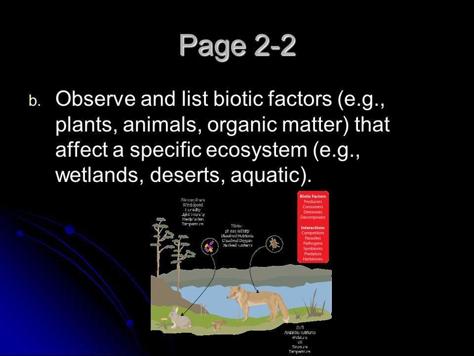 Page 2-2 Observe and list biotic factors (e.g., plants, animals, organic matter) that affect a specific ecosystem (e.g., wetlands, deserts, aquatic).