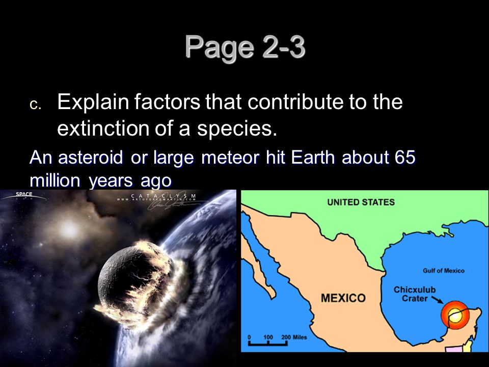 Page 2-3 Explain factors that contribute to the extinction of a species.