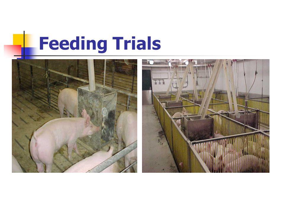 Feeding Trials