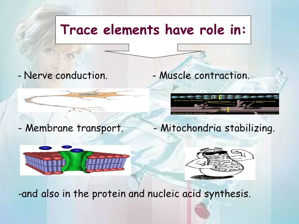 Trace elements have role in: