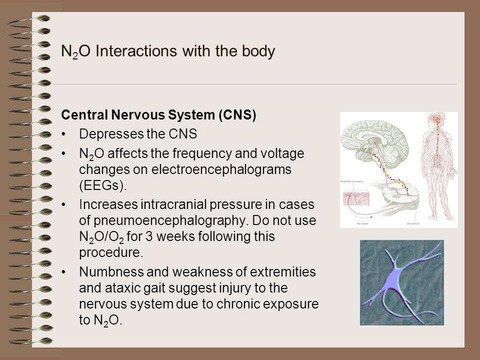 N2O Interactions with the body