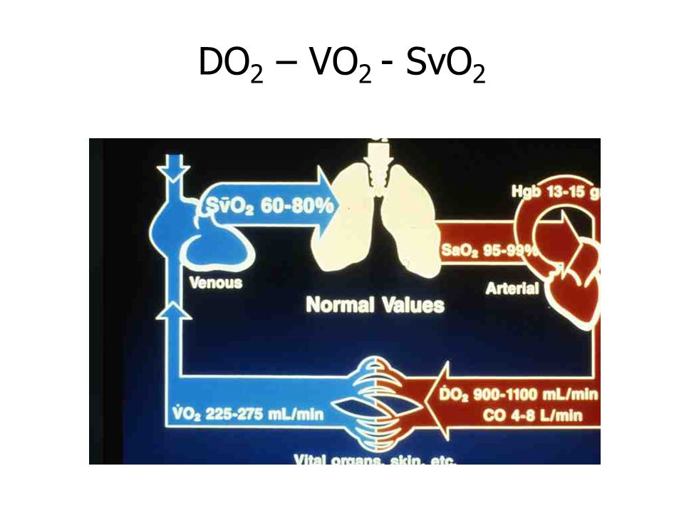 DO2 – VO2 - SvO2