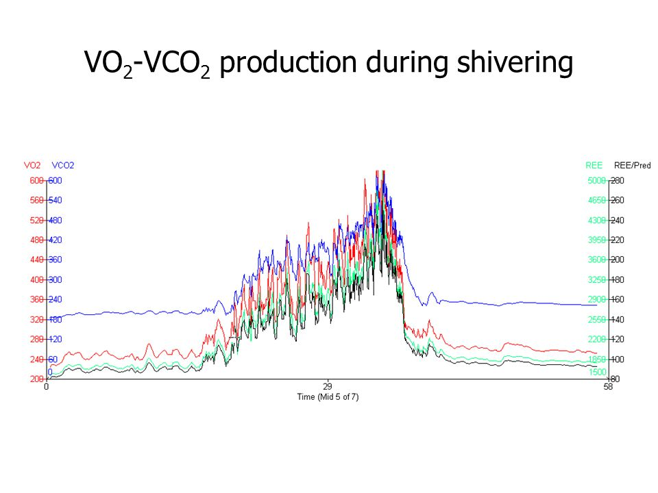 VO2-VCO2 production during shivering