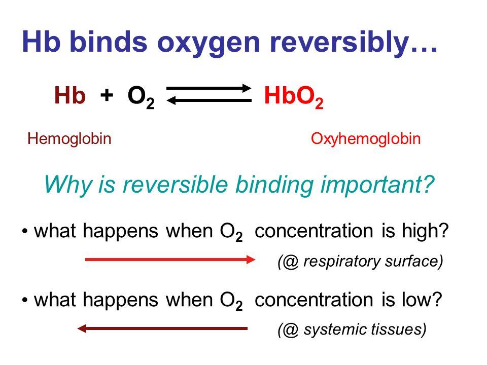 Hb binds oxygen reversibly…