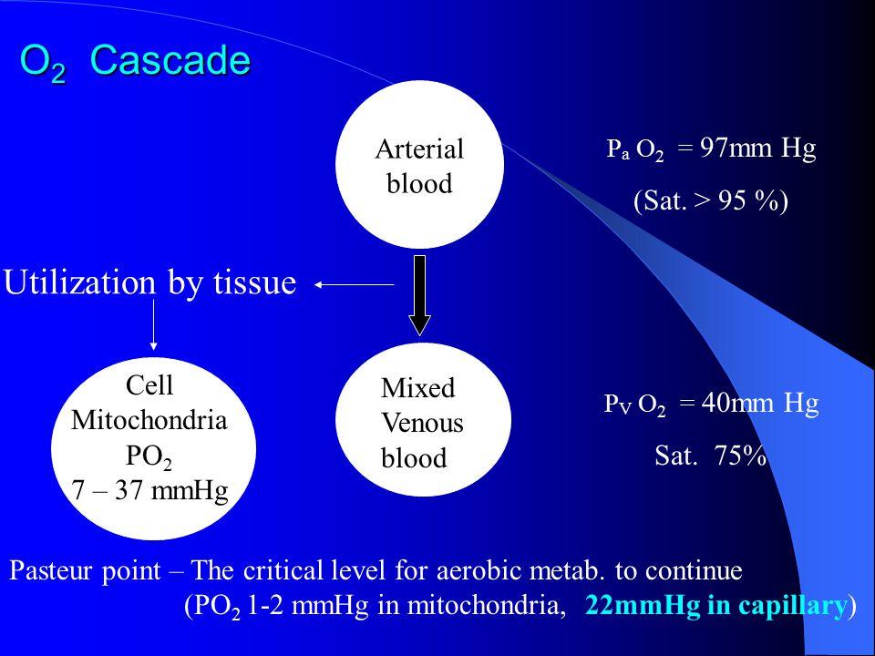 Cell Mitochondria PO2 7 – 37 mmHg