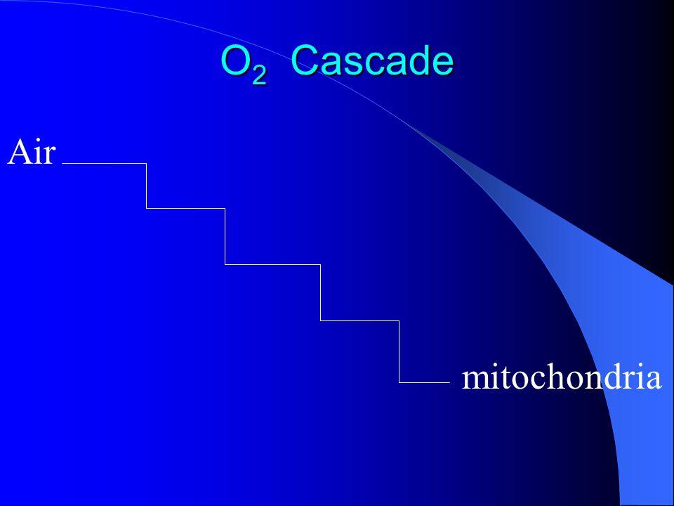O2 Cascade Air mitochondria
