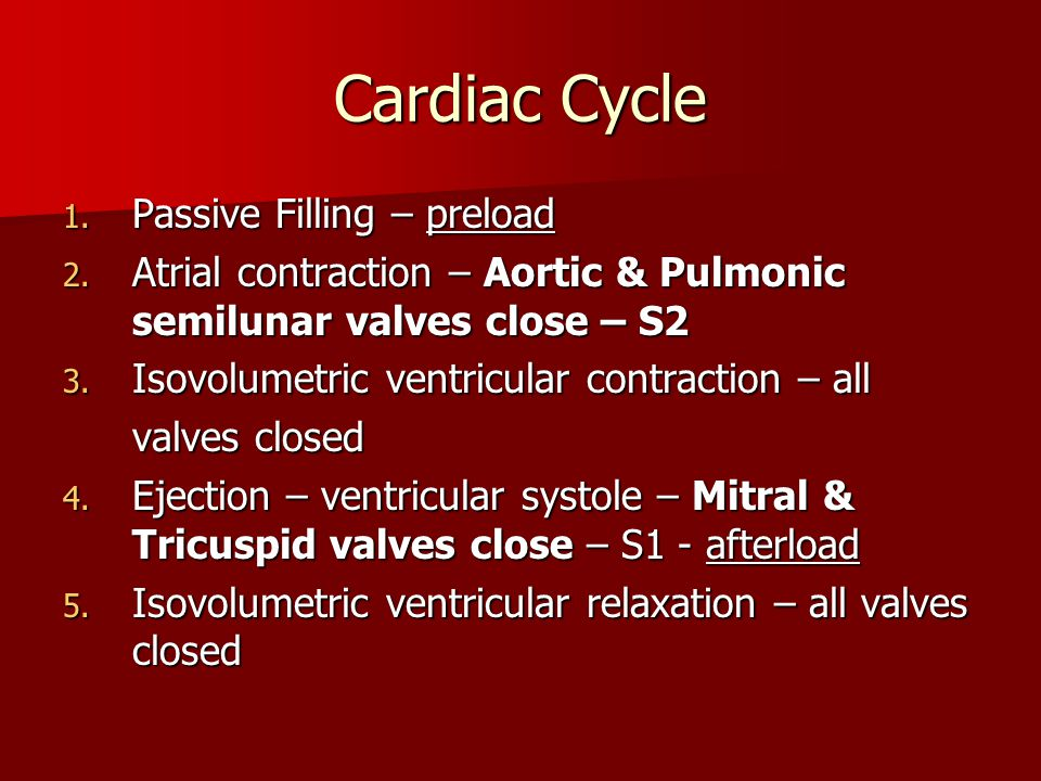 Cardiac Cycle Passive Filling – preload