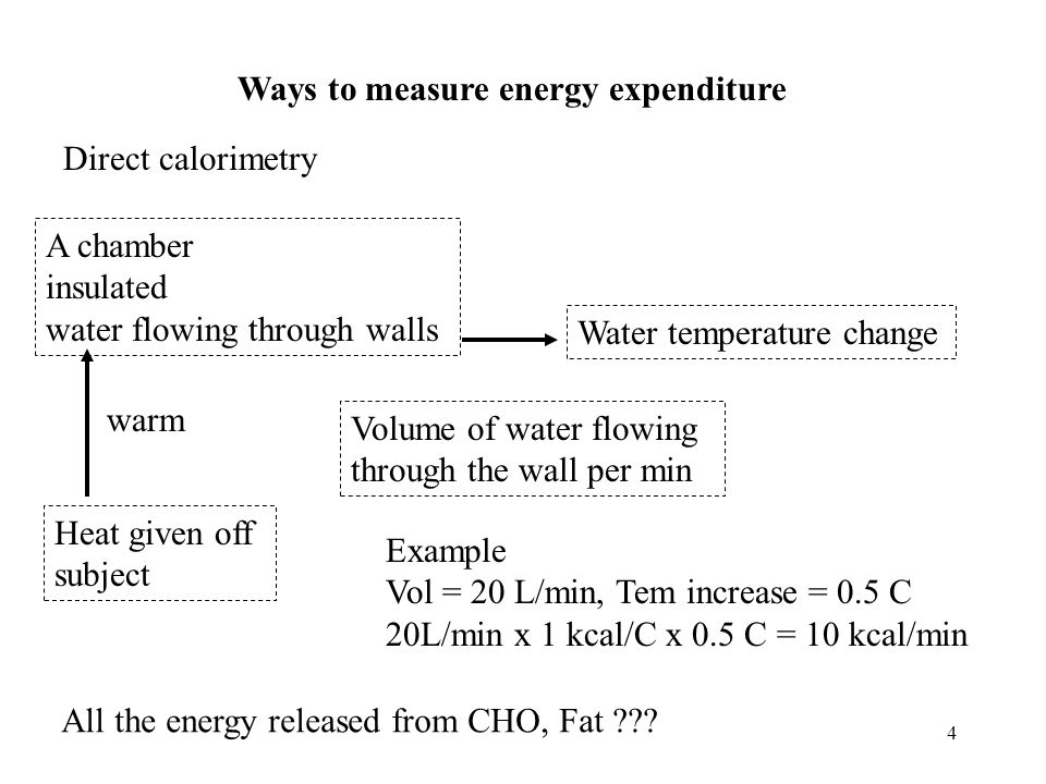 Ways to measure energy expenditure