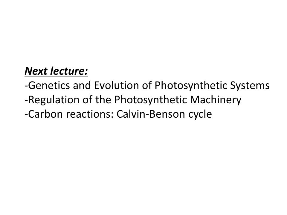 Next lecture: -Genetics and Evolution of Photosynthetic Systems. -Regulation of the Photosynthetic Machinery.