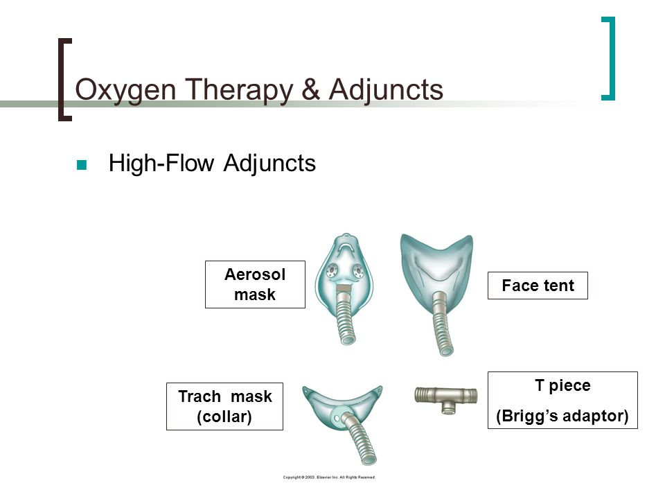 40 Oxygen Therapy u0026 Adjuncts  sc 1 st  SlidePlayer & Oxygen Therapy u0026 Adjuncts - ppt video online download