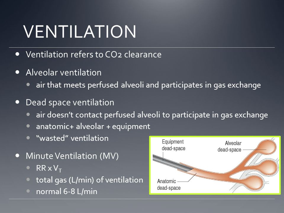VENTILATION Ventilation refers to CO2 clearance Alveolar ventilation