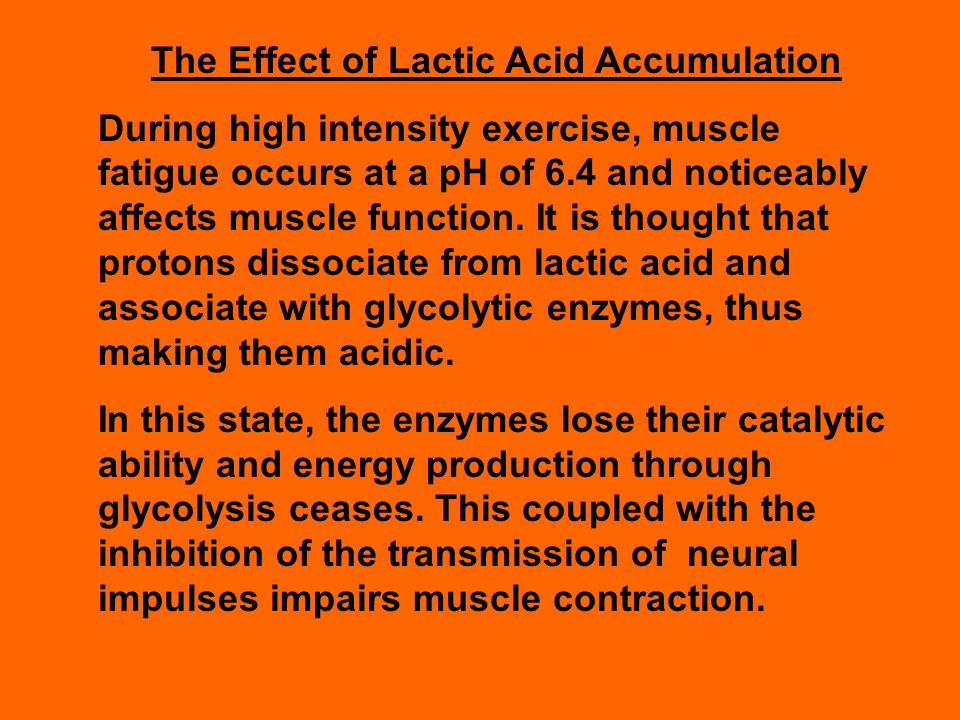 The Effect of Lactic Acid Accumulation