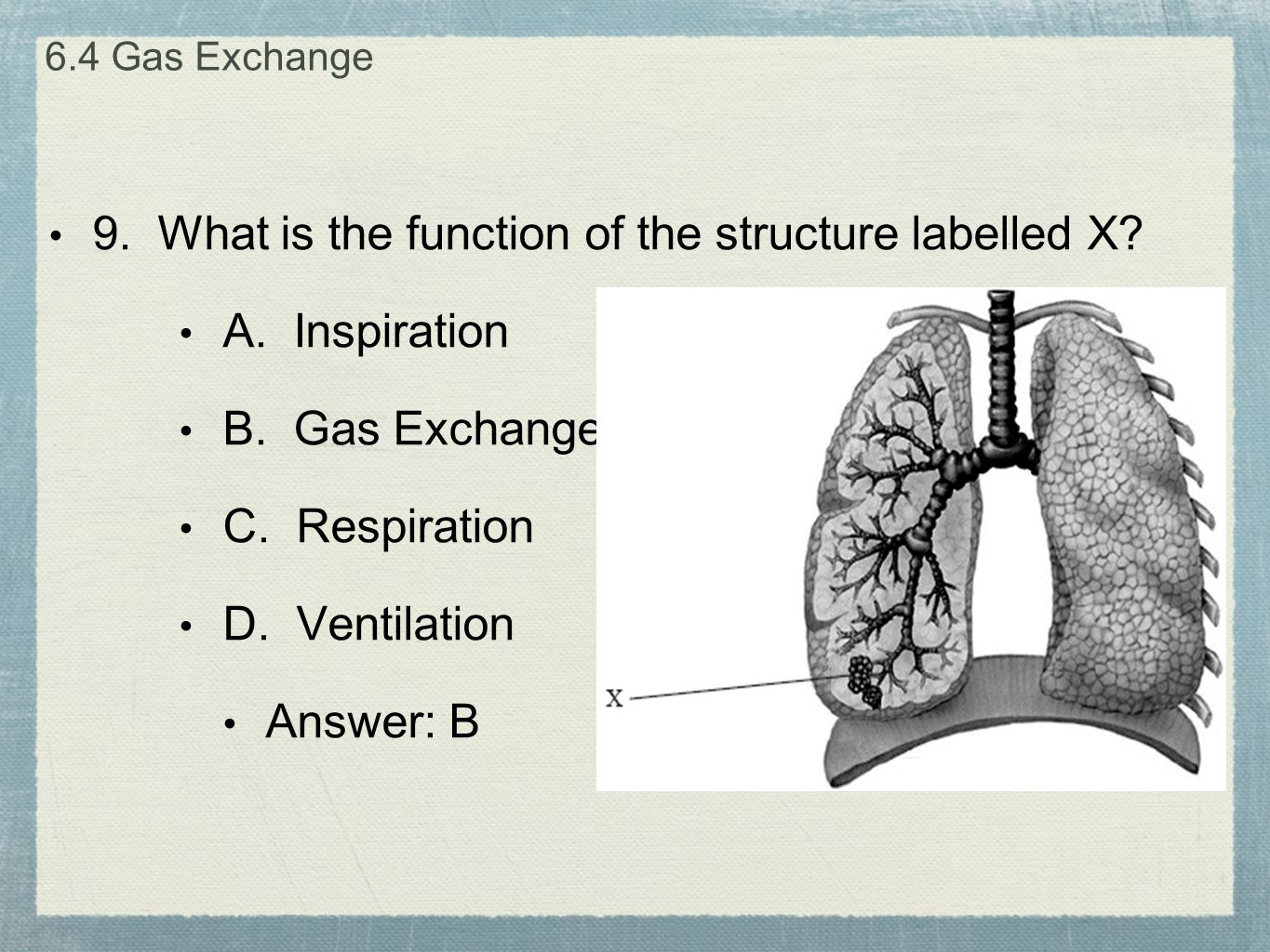 9. What is the function of the structure labelled X A. Inspiration
