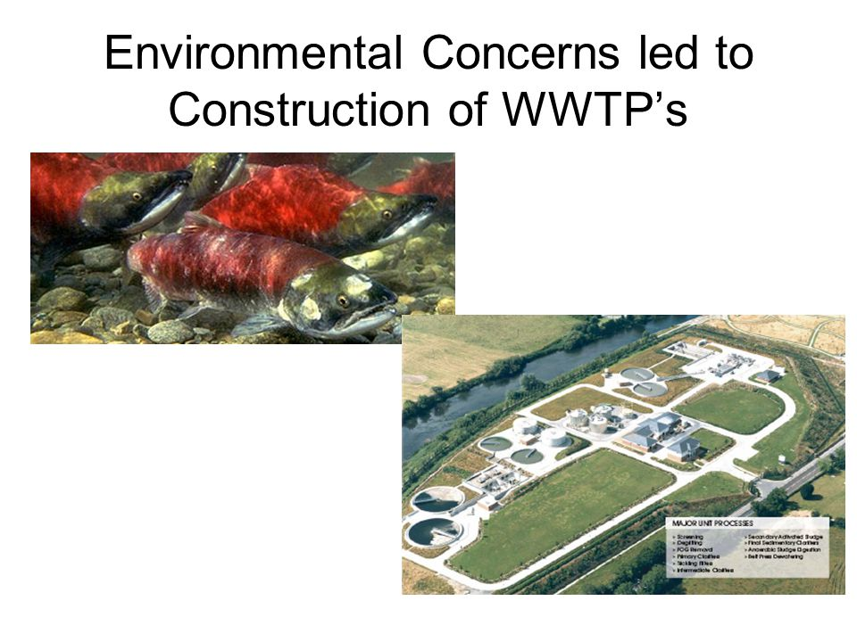 Environmental Concerns led to Construction of WWTP's