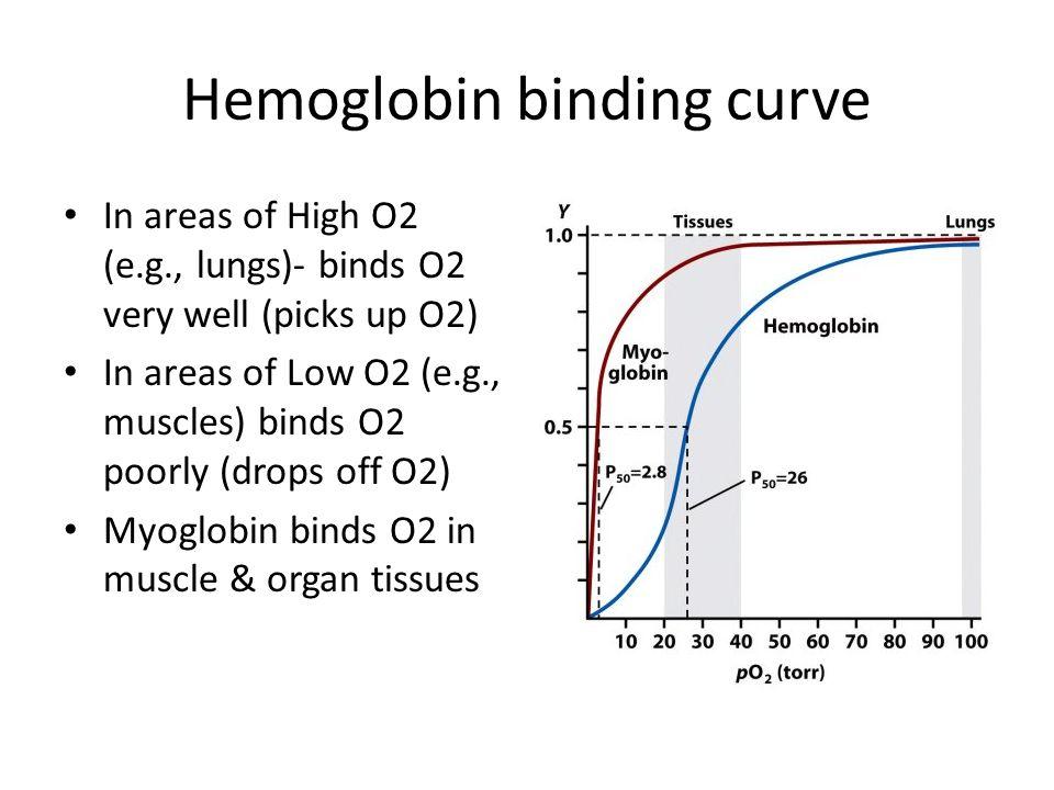 Hemoglobin binding curve