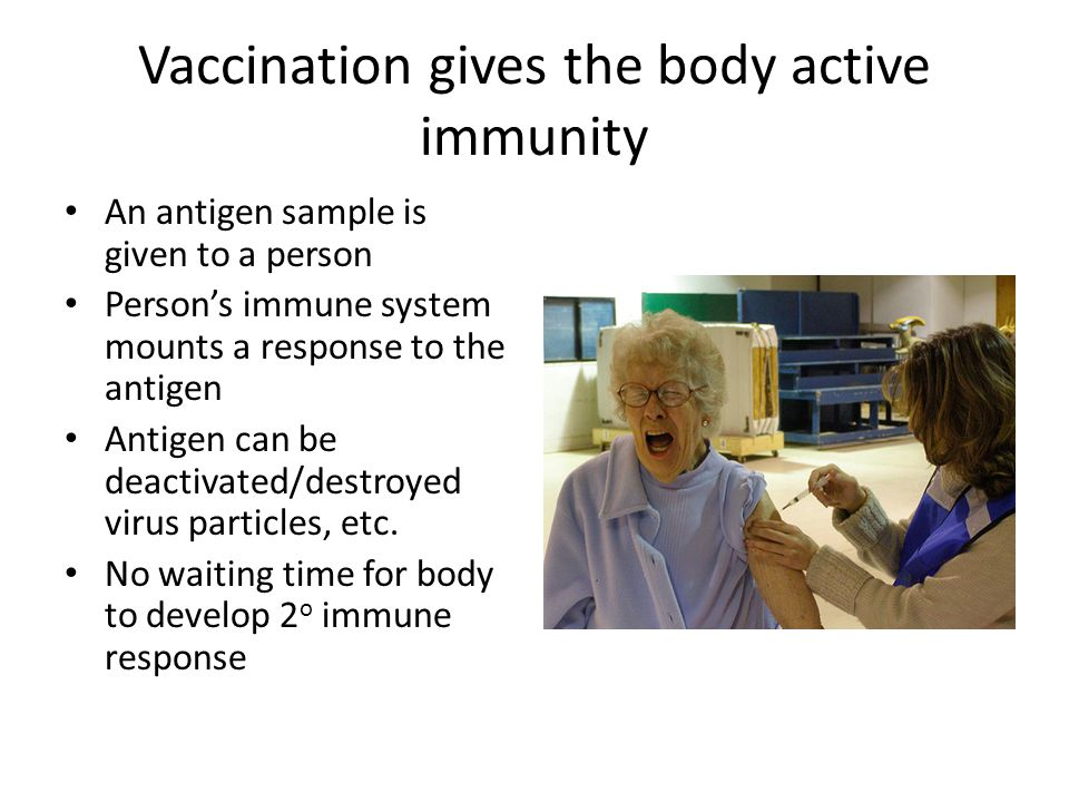 Vaccination gives the body active immunity