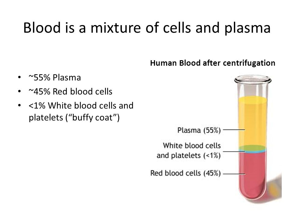 Blood is a mixture of cells and plasma