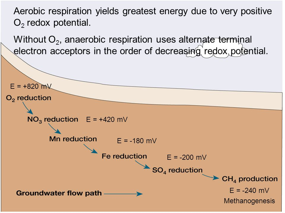 Aerobic respiration yields greatest energy due to very positive O2 redox potential.