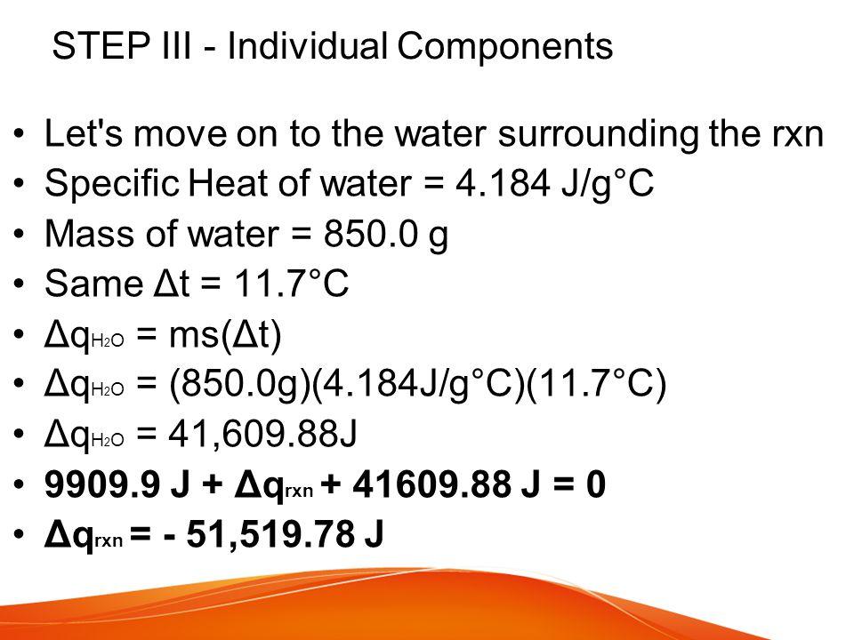 STEP III - Individual Components