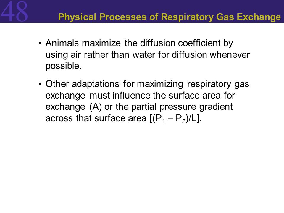 Physical Processes of Respiratory Gas Exchange