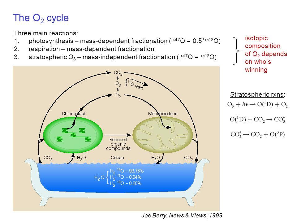 The O2 cycle Three main reactions: