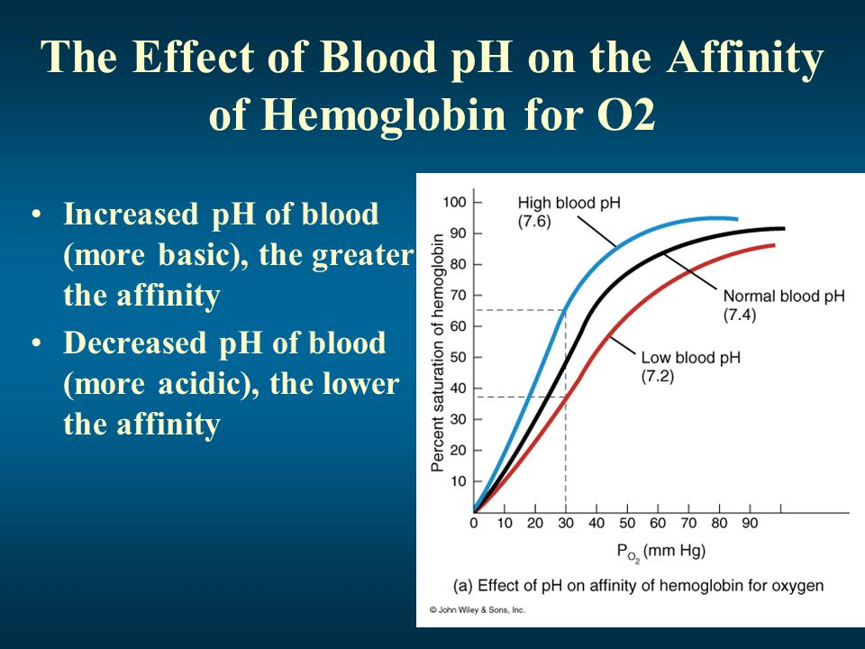The Effect of Blood pH on the Affinity of Hemoglobin for O2