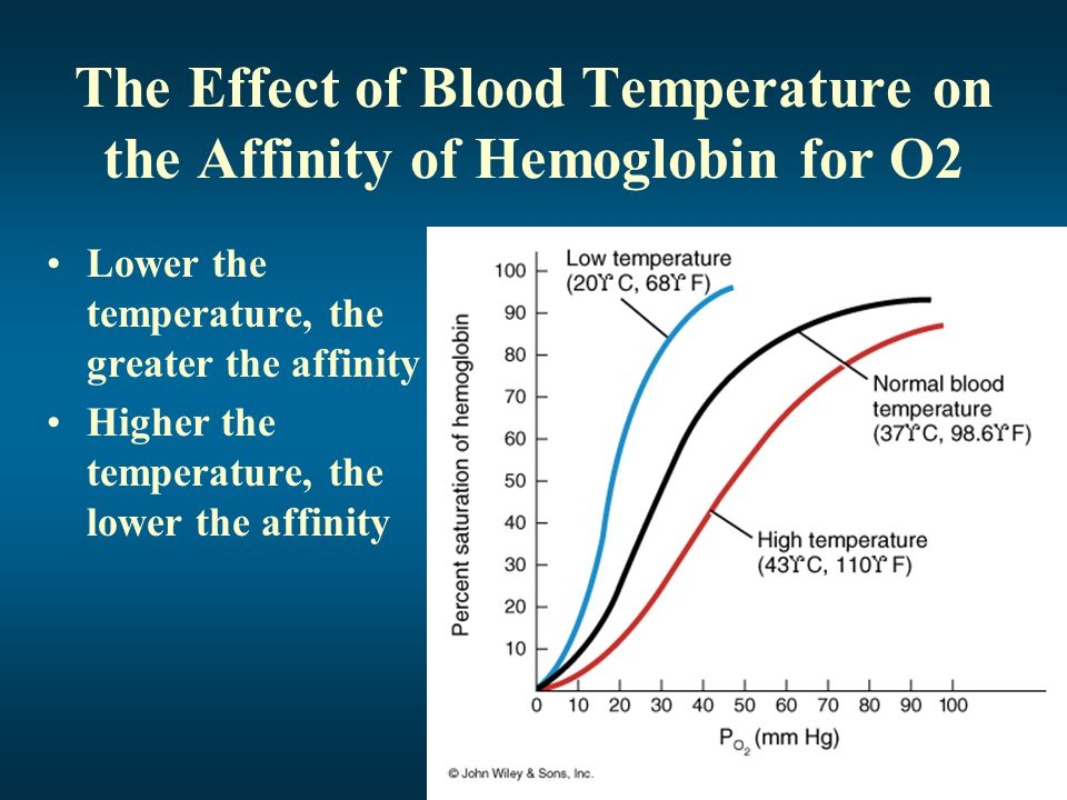 The Effect of Blood Temperature on the Affinity of Hemoglobin for O2