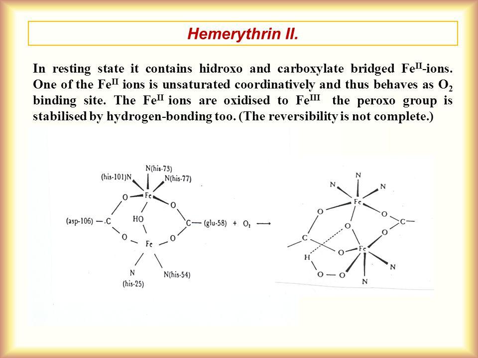 Hemerythrin II.