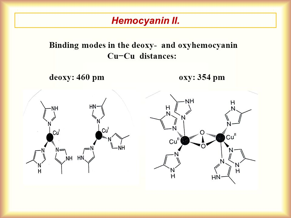 Hemocyanin II. Binding modes in the deoxy- and oxyhemocyanin