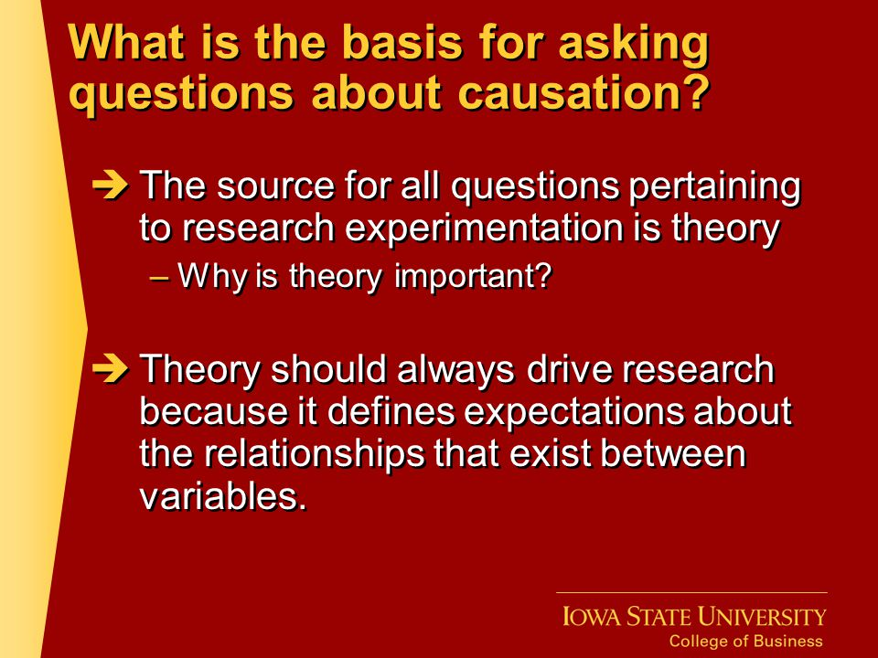 What is the basis for asking questions about causation