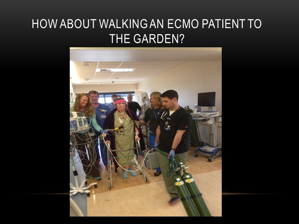 How about walking an Ecmo patient to the Garden