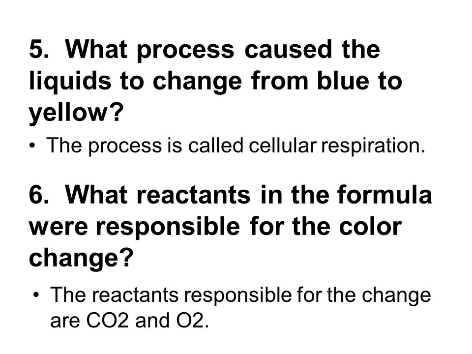 5. What process caused the liquids to change from blue to yellow