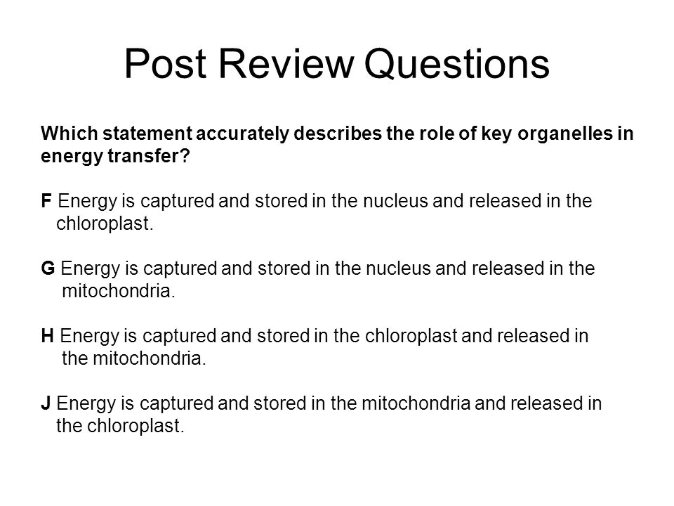 Post Review Questions Which statement accurately describes the role of key organelles in energy transfer