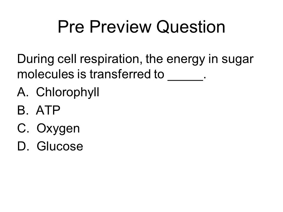 Pre Preview Question During cell respiration, the energy in sugar molecules is transferred to _____.