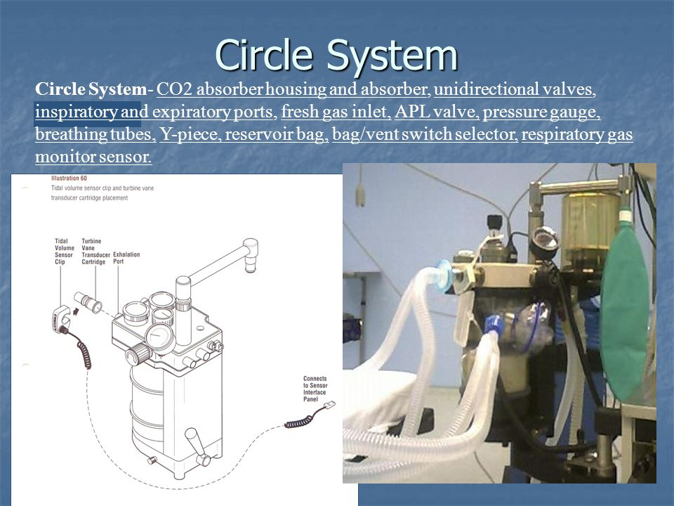 Circle System