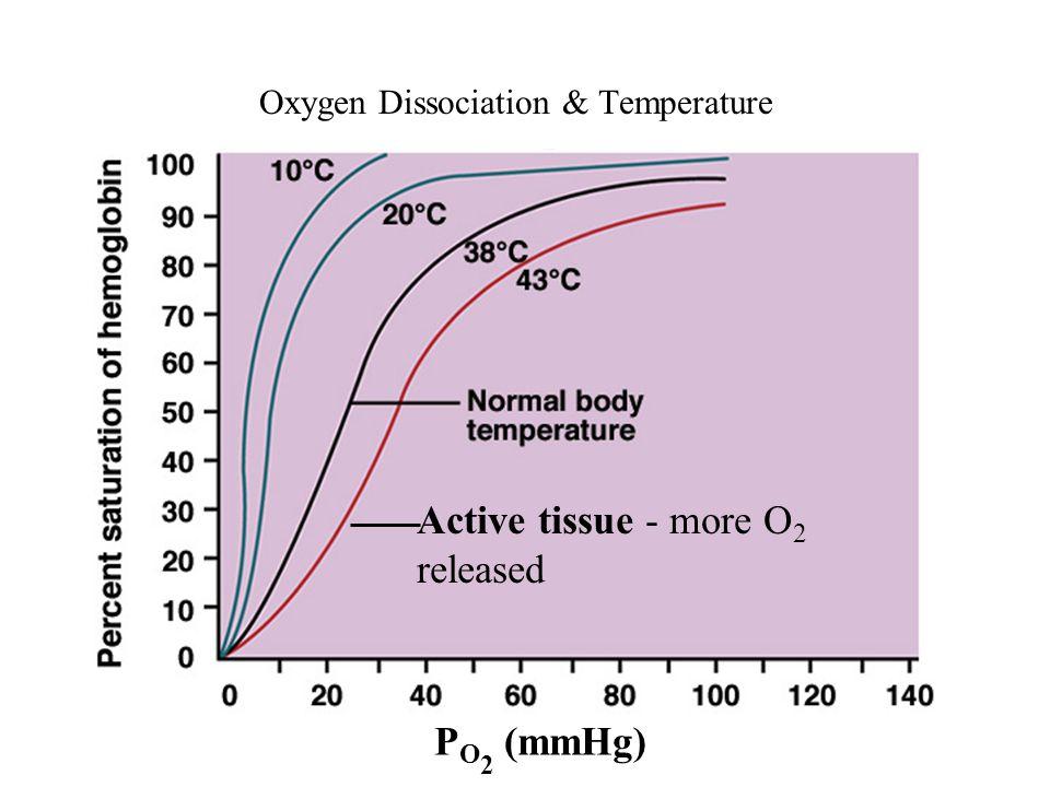 Oxygen Dissociation & Temperature