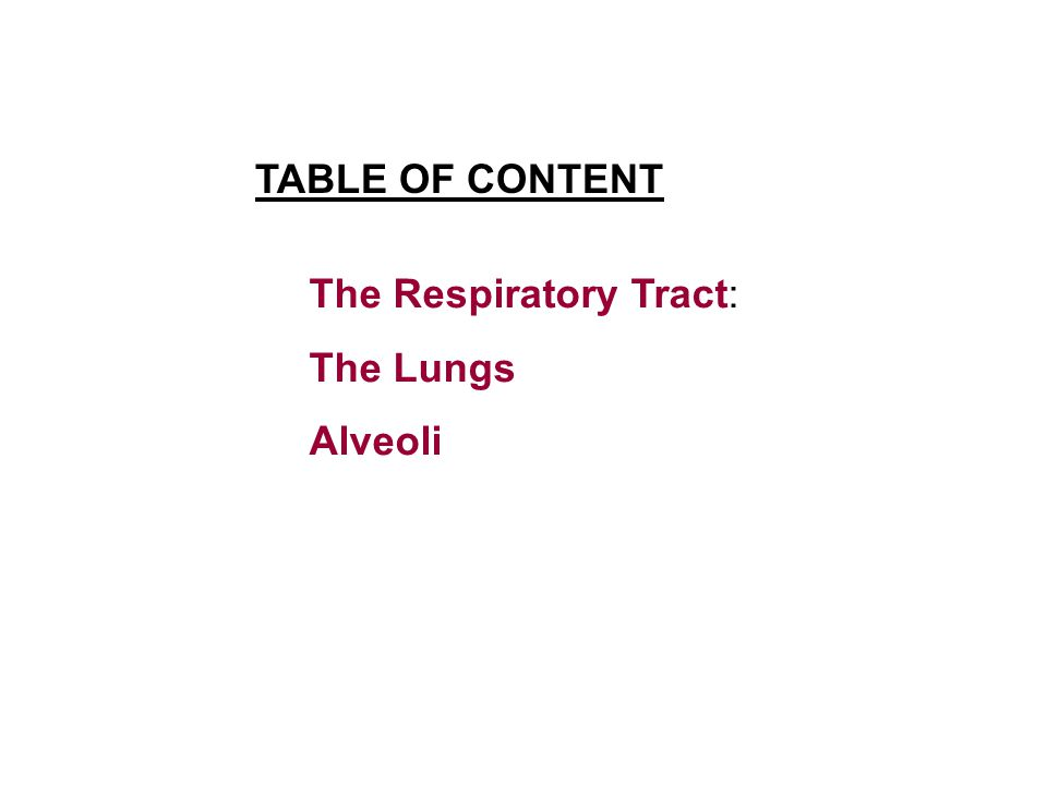 TABLE OF CONTENT The Respiratory Tract: The Lungs Alveoli