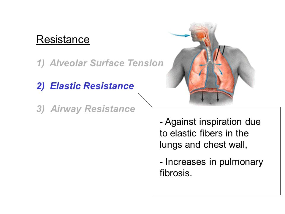 Resistance 1) Alveolar Surface Tension 2) Elastic Resistance