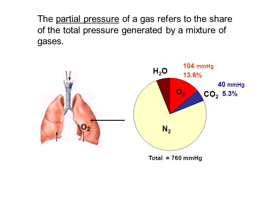 The partial pressure of a gas refers to the share of the total pressure generated by a mixture of gases.