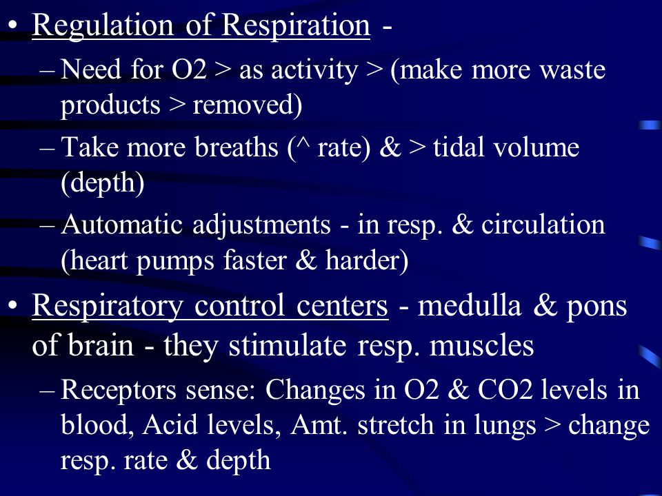 Regulation of Respiration -