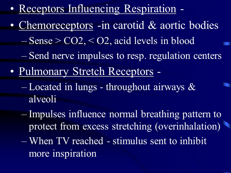 Receptors Influencing Respiration -
