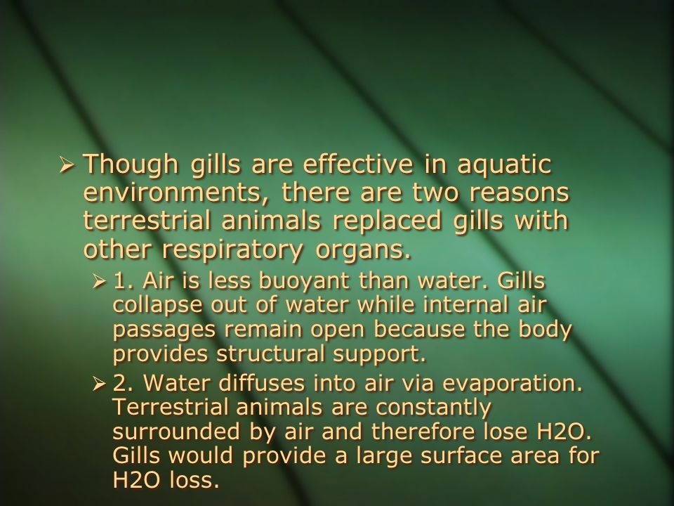 Though gills are effective in aquatic environments, there are two reasons terrestrial animals replaced gills with other respiratory organs.