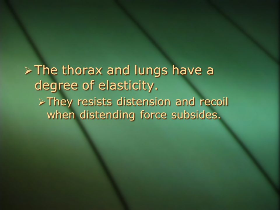 The thorax and lungs have a degree of elasticity.