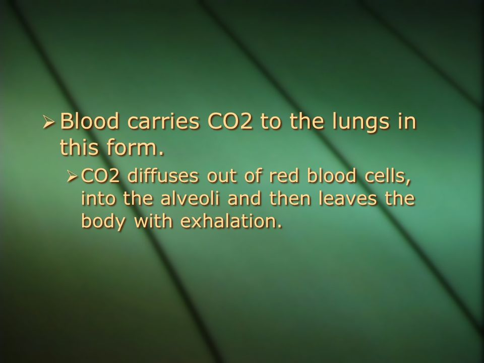 Blood carries CO2 to the lungs in this form.
