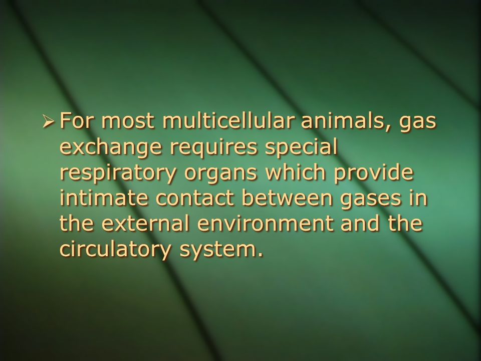 For most multicellular animals, gas exchange requires special respiratory organs which provide intimate contact between gases in the external environment and the circulatory system.