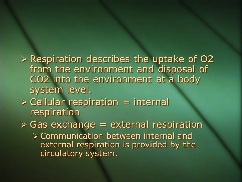 Cellular respiration = internal respiration